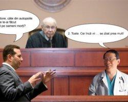 Top 5 bancuri cu avocati