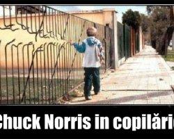 Cele mai haioase imagini cu Chuck Norris